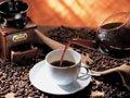 В інтернеті стартувало голосування за найкращу кав'ярню Львова