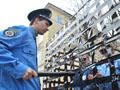 Львівська молодь у клітці протестувала проти законопроекту про мирні зібрання