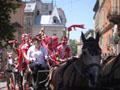 Коні в центрі – справжня екзотика!, - данці